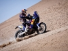 Ruben Faria in action during the 6th stage of Dakar Rally between Iquique and Arica, Chile on january 7th, 2011