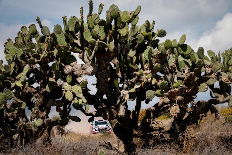 WRC – Hyundai da top 5 in Messico