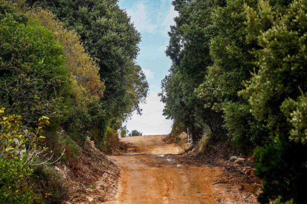 WRC | Rally Italia Sardegna 2020, la copertura tv e web in chiaro