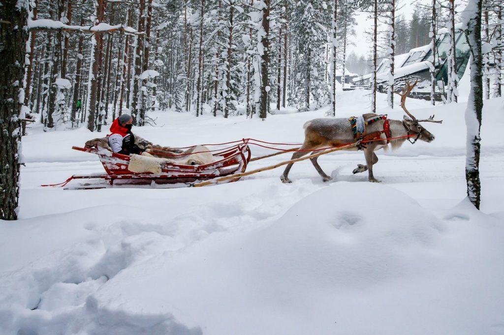 WRC | Come sopravvivere all'Arctic Rally Finland
