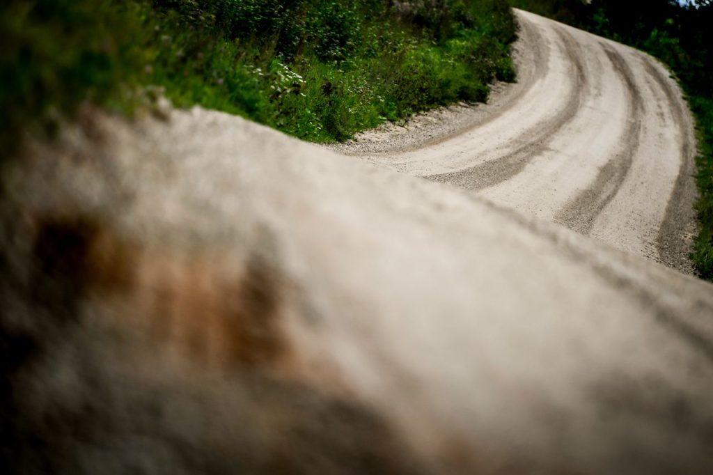Dal WRC al CIR: tempi duri per i rally tra pandemia ed incertezze